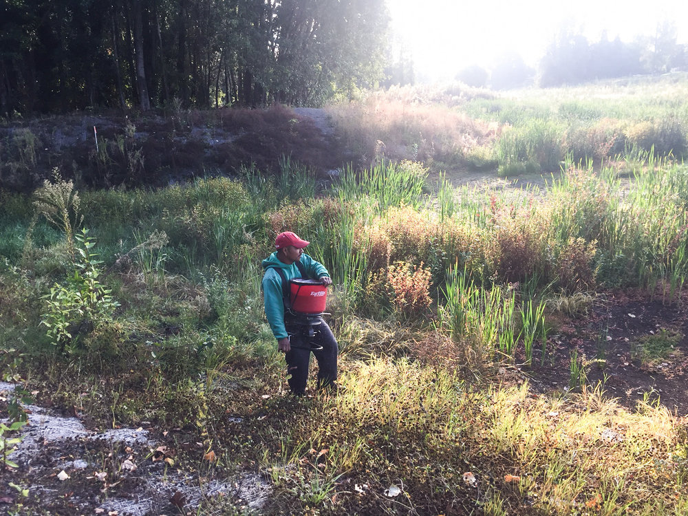 Crew member Abel works on habitat restoration in the Colwood Restoration Area in Cully.