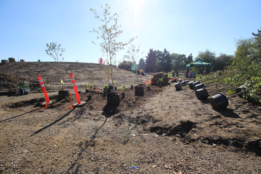 Verde Landscape crew members and volunteers planted over 400 plants at the Native Gathering Garden Planting in October 2017.