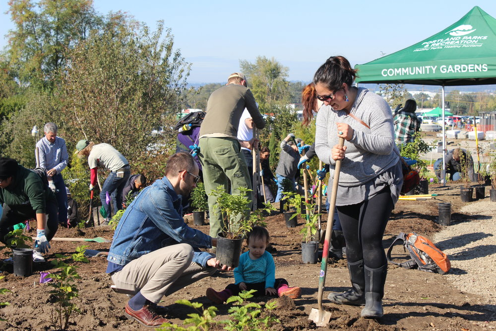 Verde Staff Alan Hipolito and Leah Altman plant at the Native Gathering Garden planting in October 2017.