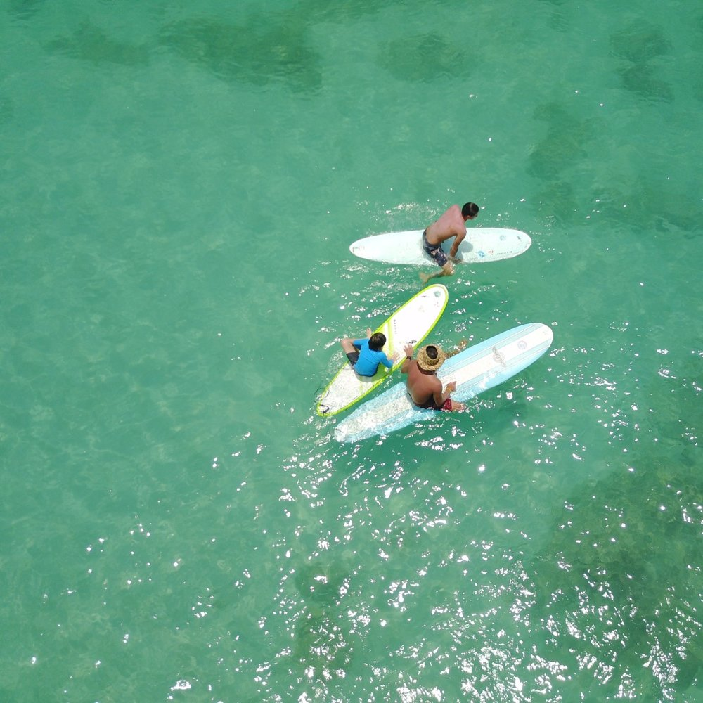 big-wave-dave-waikiki-group-surfing-lessons-drone.jpeg
