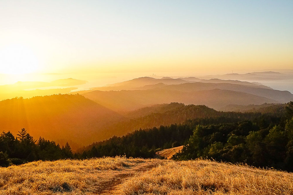 A golden sunrise on Mt. Tamalpais