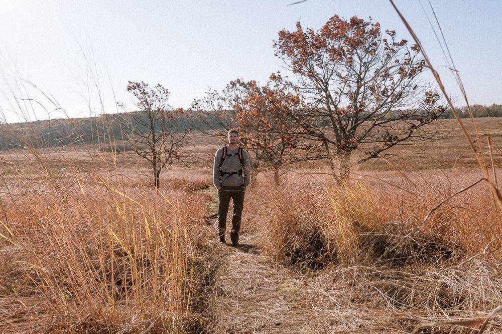 A hike through Big Meadows, Shenandoah NP.