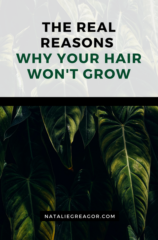 THE REAL REASONS WHY YOUR HAIR WON'T GROW - NATALIE GREAGOR.png