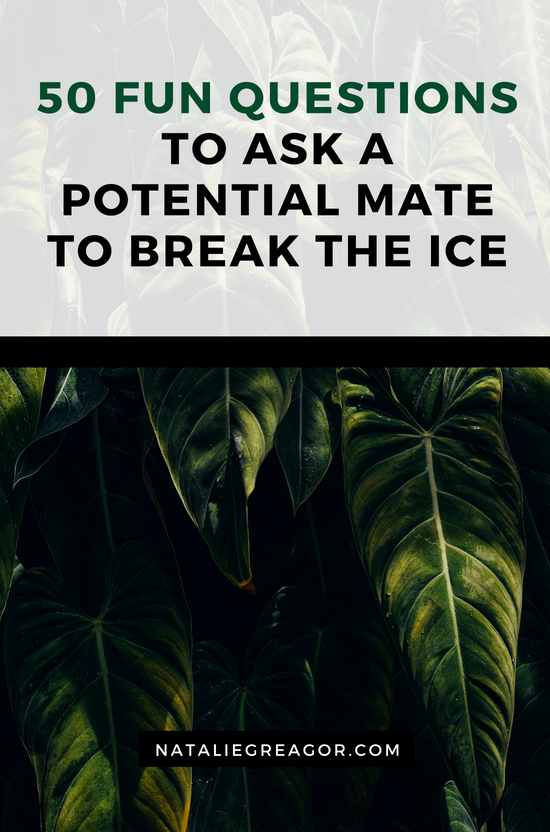 50 Fun Questions to Ask a Potential Mate to Break the Ice - Natalie Greagor