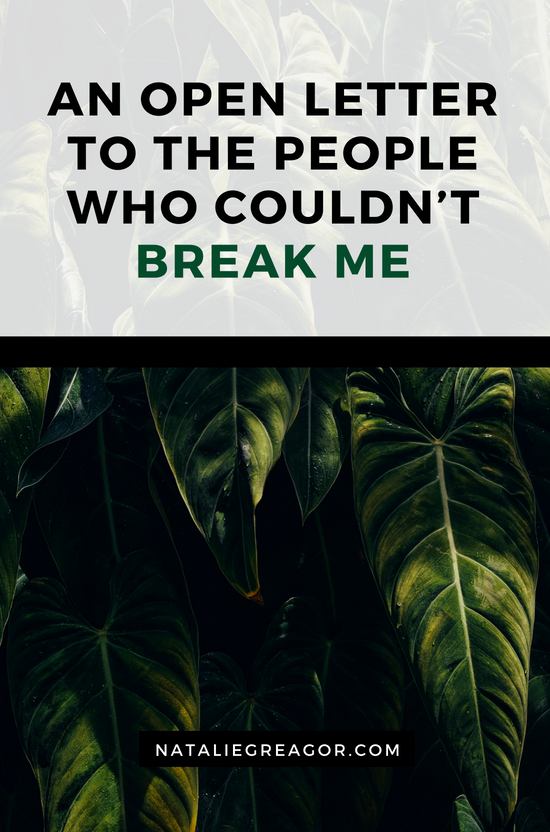 AN OPEN LETTER TO THE PEOPLE WHO COULDN'T BREAK ME - NATALIE GREAGOR.png