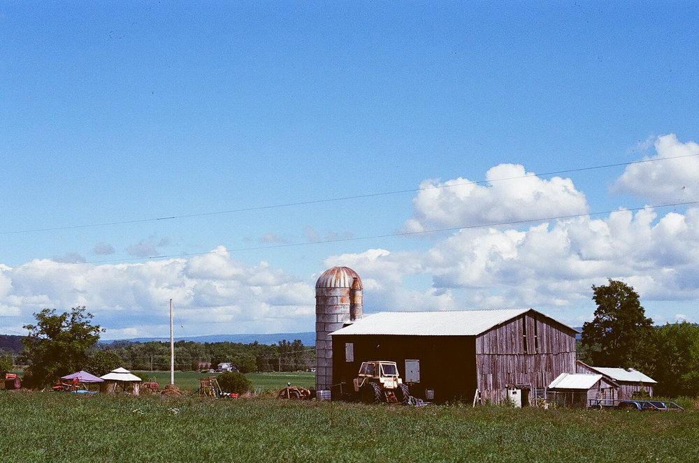 The Farm - New York