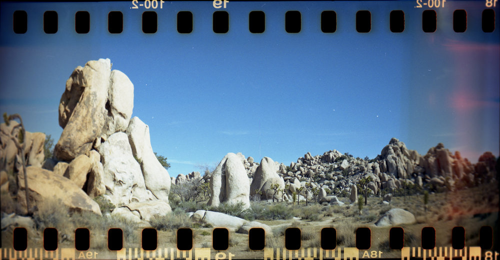 Shot with - Lomography Sprocket Rocket Superpop, 35mm