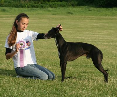 Dapper, 2007-2008 NW Versatility winner