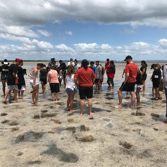 DreamTrack educational and adventure day myora springs North Stradbroke Island. #gooriemookatours #redlandstourism #redlandscity #stradbrokeisland #stradbrokeferries #platinumairtours #straddiechamberofcommerce #queenlandmuseum #dreamtrack #queenslandtourism
