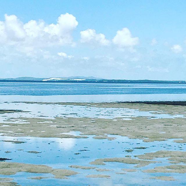 Correncorrenpa North Stradbroke Island #gooriemookatours #redlandcity #straddieis #nortstradbrokeisland #queenslandmuseum #platinumairtours #stadbrokeferries