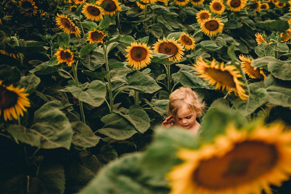 girlinthesunflowers.jpg