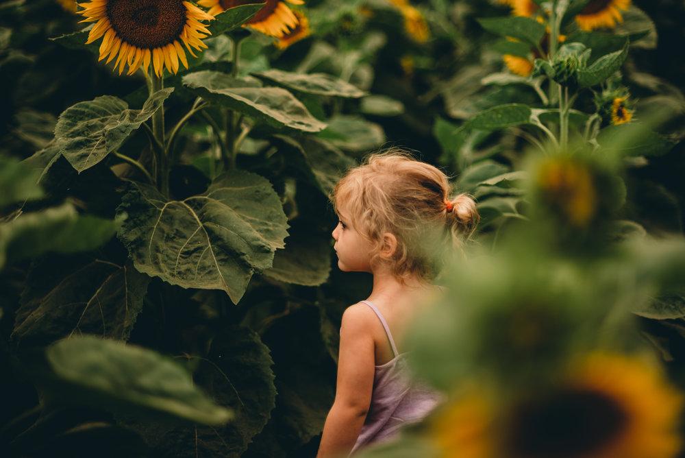 girlstandinginsunflowers.jpg