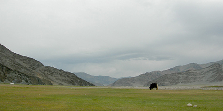 m_scenery.jpg