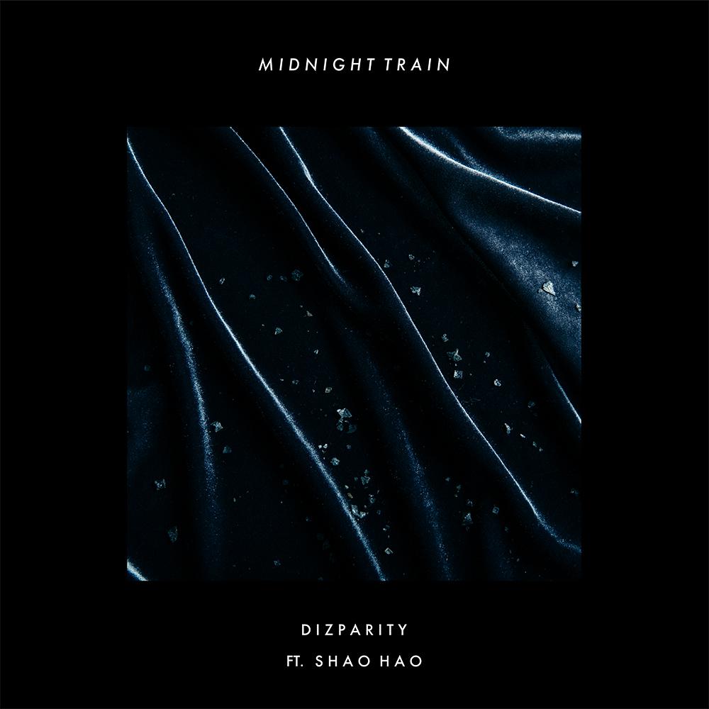 Dizparity-深夜列車