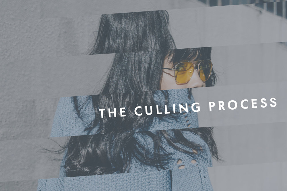 The Culling Process 1.jpg