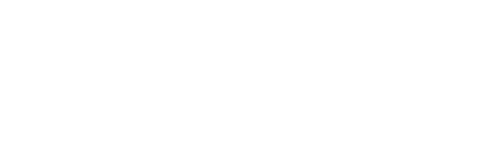 Design Icon logo 2D white.png