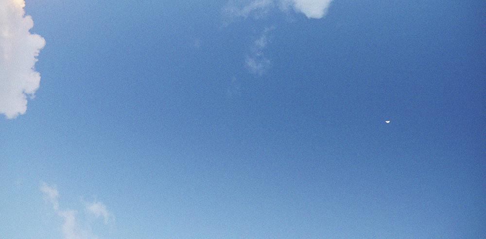 skyweb.png