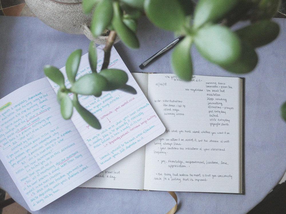 journalswriting.jpg
