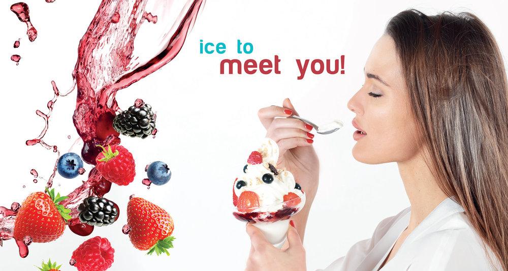 ice-to-meet-you---copieW.jpg
