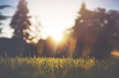 Sunlight is our major source of vitamin D