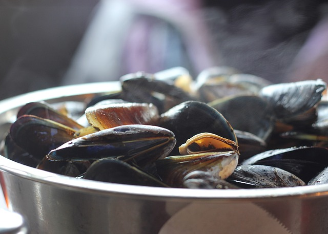 mussels are a good source of omega 3