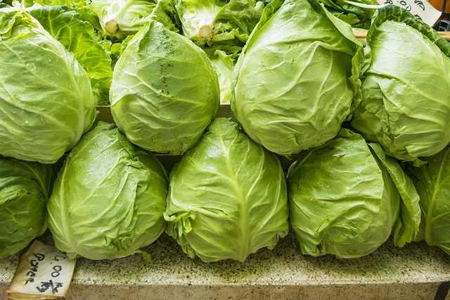lettuce is low nutrition but high hydration