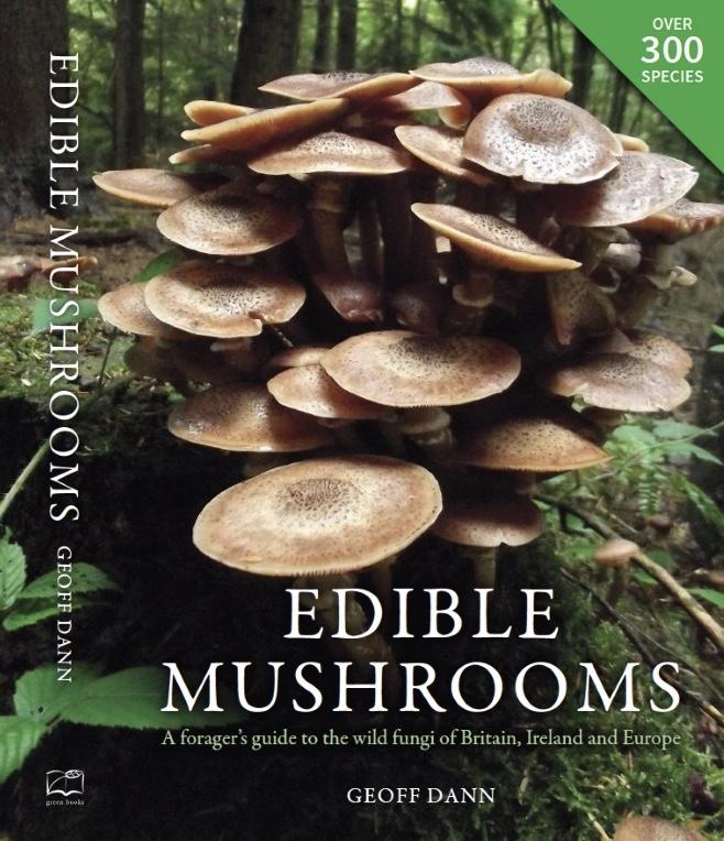 edible-mushrooms-geoff-dann