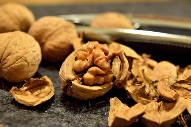 walnuts-932080_640-1