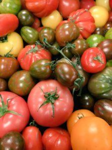 tomatoes-225x300.jpg