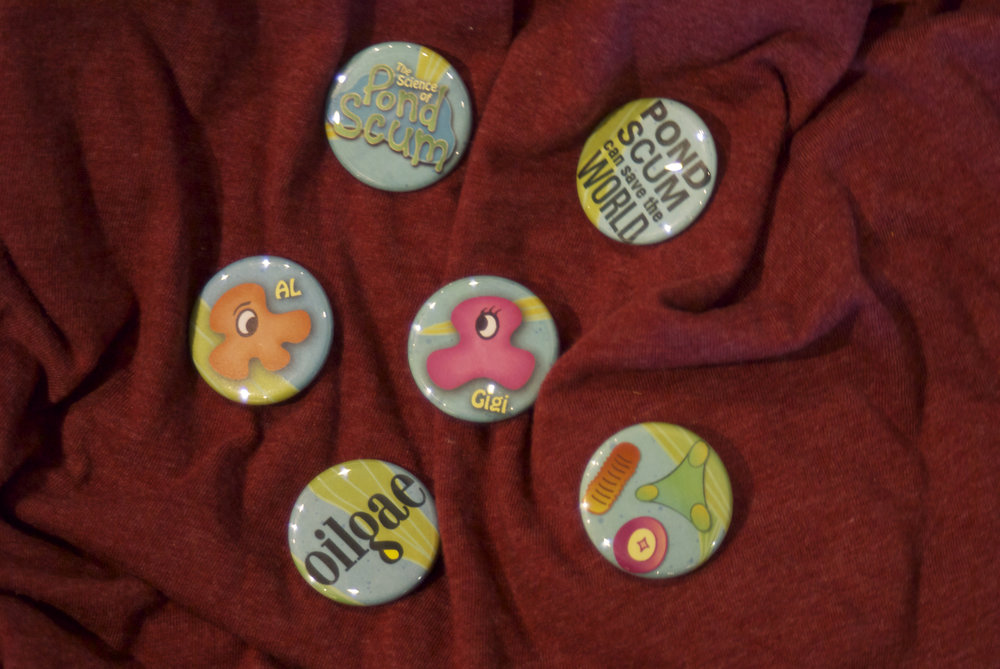 A custom set of buttons/pins to be given out as prizes or rewards during the lecture