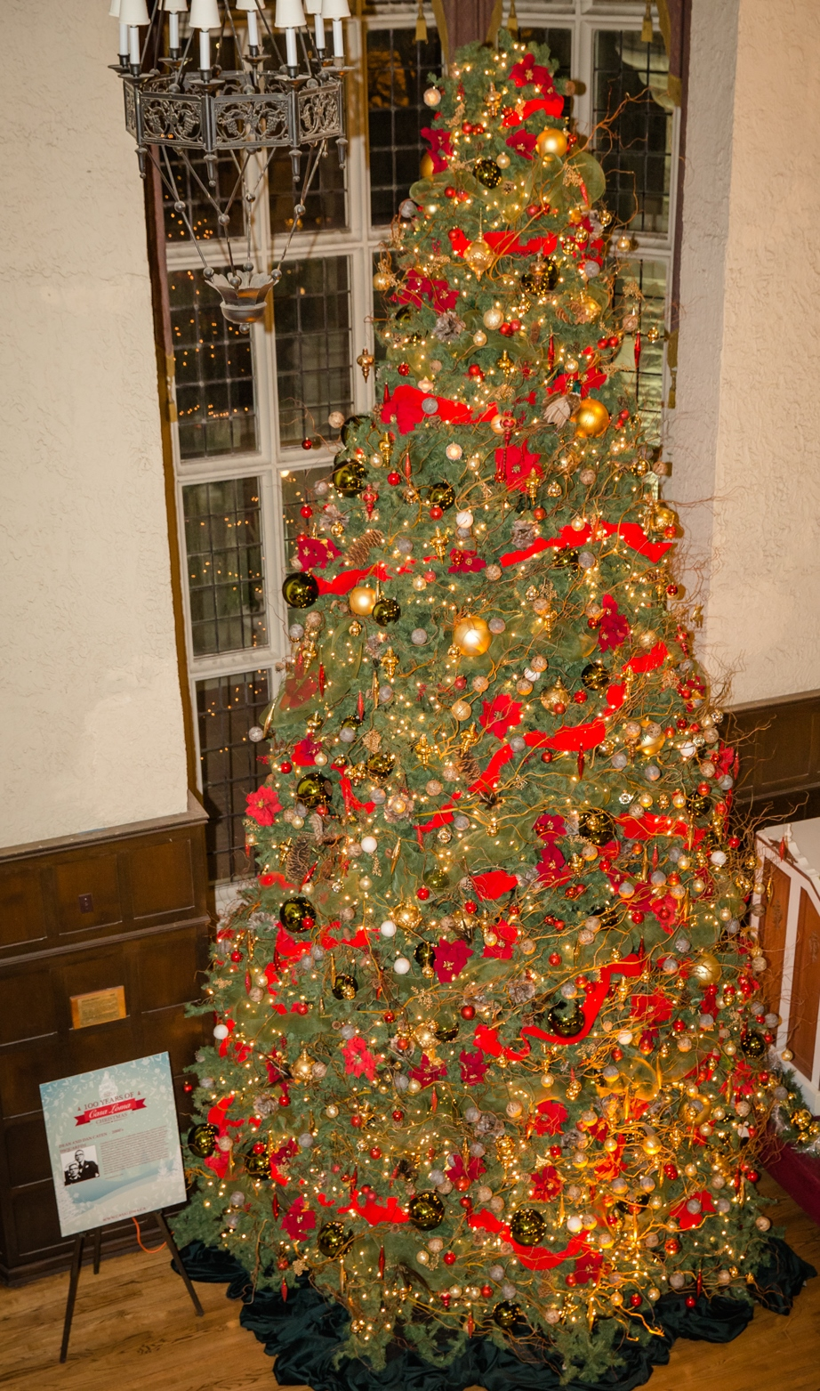 Great Hall Tree, 35ft, 2014.jpg