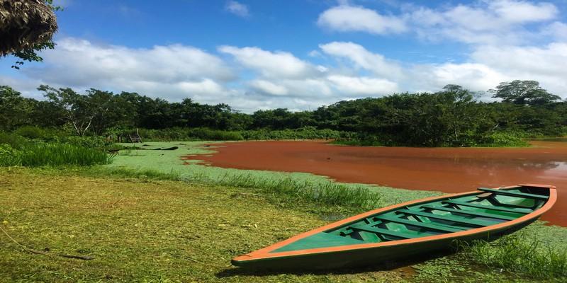 Ecological Pond Tour
