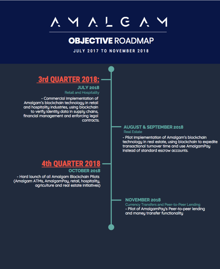 Amalgam+Objective+Roadmap+(2_2).png