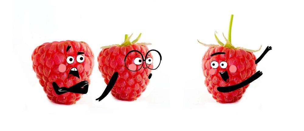MER17_01_Raspberry2.jpg