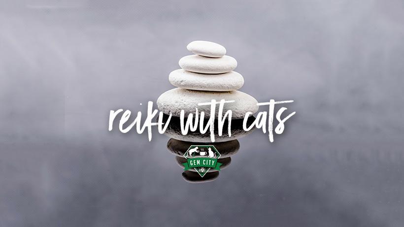 2_7_19_coverphoto_reikiwithcats.jpg