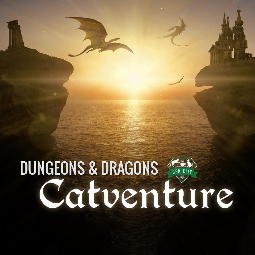 Dungeons & Dragons Catventure Night — Gem City Catfé