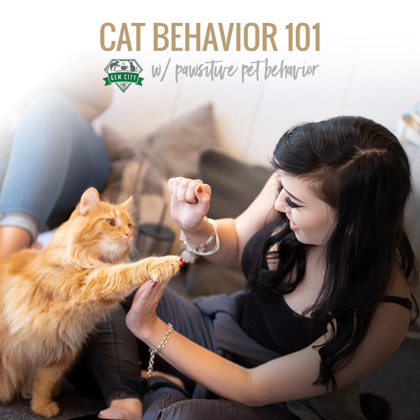 04.04.19_catbehaviorclass_sq.jpg