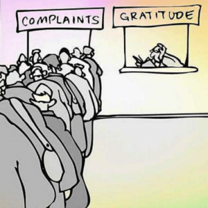 complaints-gratitude-do-you-put-enough-gratitude-out-there.png