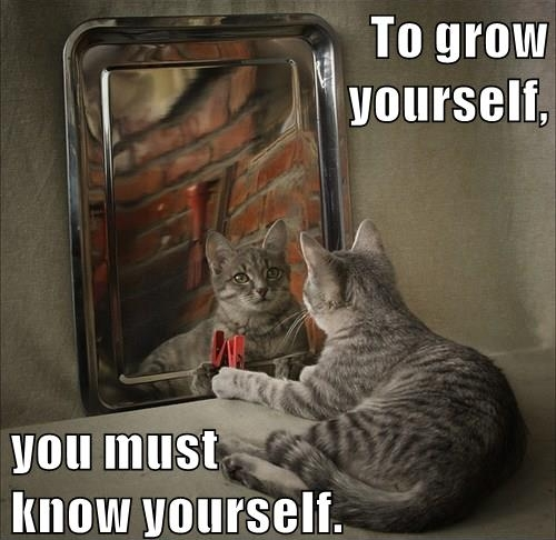 To grow yourself you must know yourself.jpg