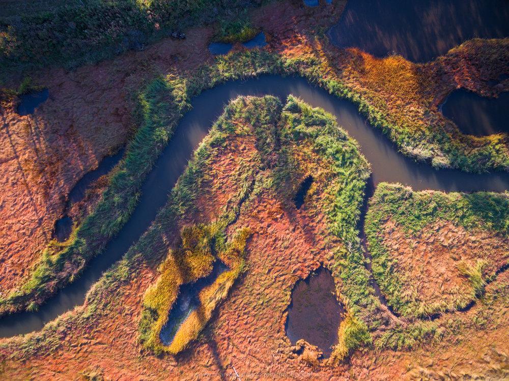 Aerial Creekscape