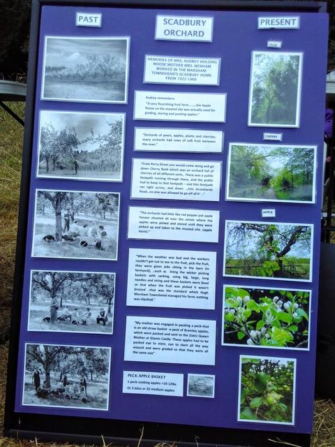Orchard display 4.jpeg