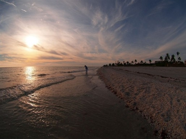 Sanibel. Photo by Christina Rutz via  Flickr .