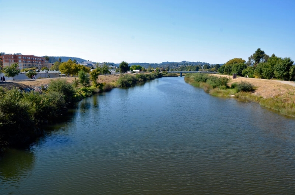 San Lorenzo River. Photo by  Alex Darocy .