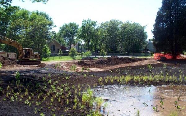 Michael S. Bezega Wetland Observation Park.