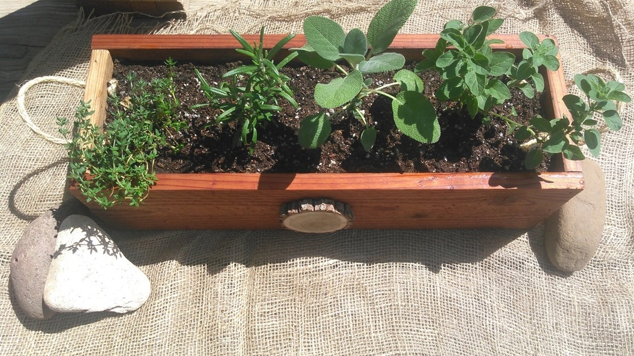 Herb Box Display.jpg
