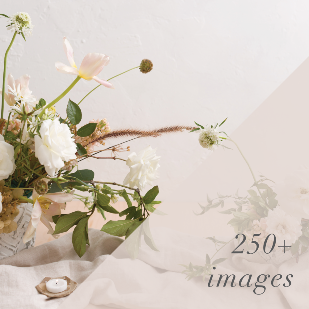 sourced-co-stock-photography-wedding-pros-publications-professional-250-images.png