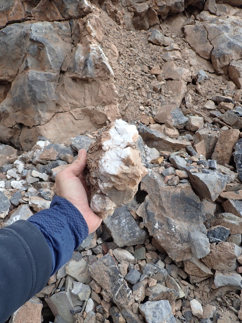 Tungsten-antimony mineralisation at the North Margeries Dal prospect, Ymer Ø.