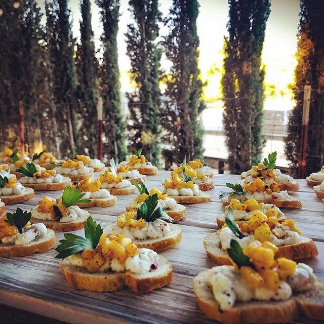 Housemade Ricotta with @organicpasturesdairy roasted pumpkin 🎃 from @peltzerpumpkinfarm .. simple and delicious #beautifulfood #cheesemaking #ricotta #roastedpumpkin #crostini #appetizers #eatlocal #eatrealfood #fallfoods #eatrealfood #appyhour #wineanddine #winery #temeculawinery #farmtotable #fieldtofork #fireroasted #woodfired #weddingcaterer #cheflife #eaterla #eatersandiego #laeats #forkfeed #feedfeed #buonappetito #welcomtotheshow