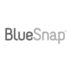BlueSnap.png