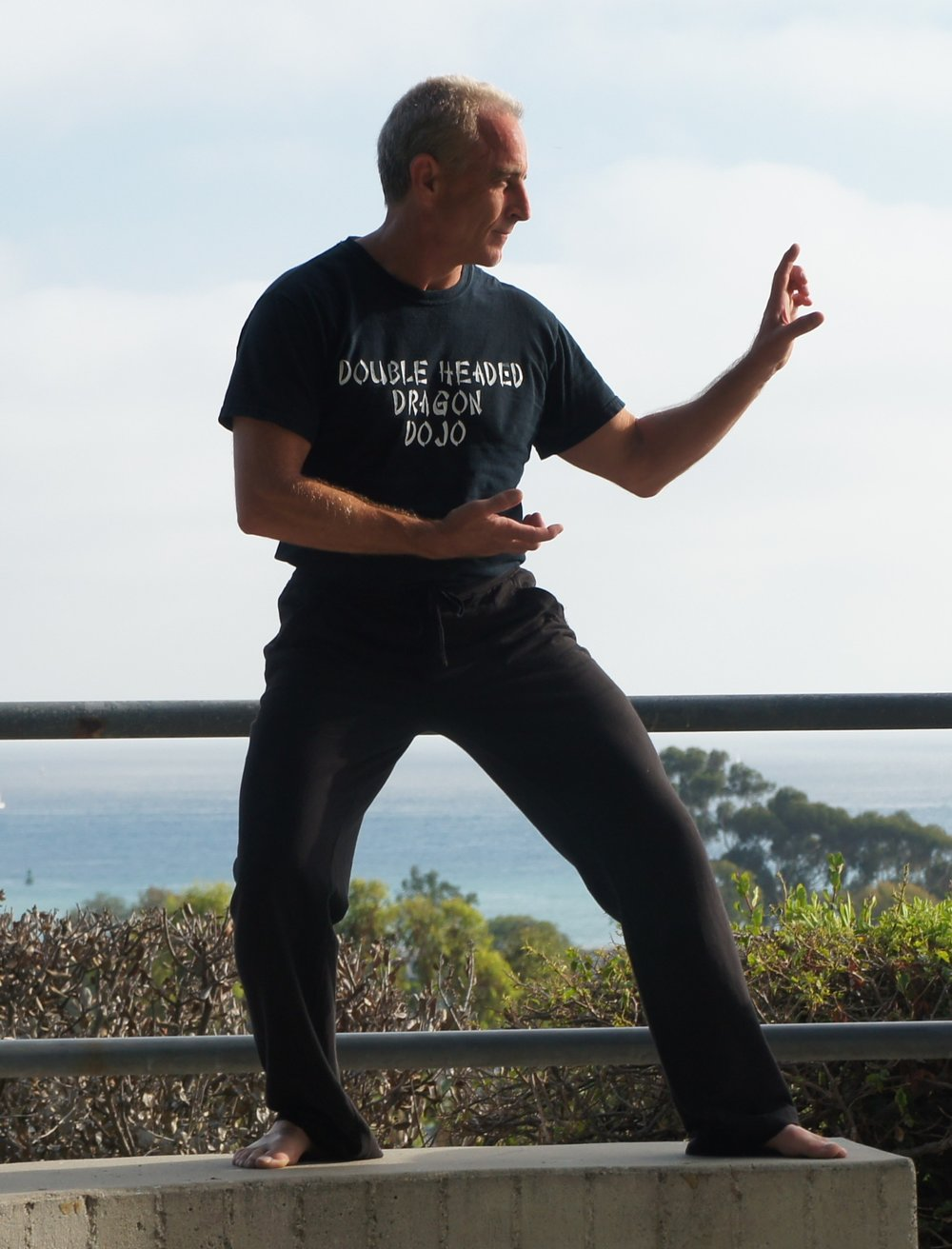 Bob Linzy   An experienced and passionate instructor in Tai Chi & Wu Shu, Bob emphasizes that with the proper mindset and energy, one can heal the body from illness and live a healthy, abundant life.